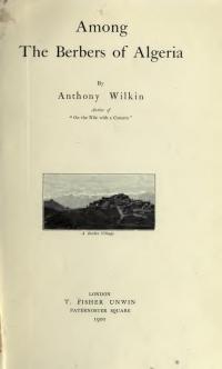 WIKKIN_Among_couv-1900.jpg