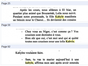 BOUREIMA Moussa_Amitié kabyle_2006_extraits.jpg